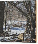 Winter Log Wood Print