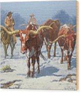 Winter Longhorns Wood Print