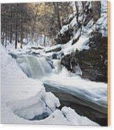 Winter Meltdown Rushing Over Conestoga Falls Wood Print by Gene Walls