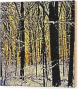 Winter Mood Lighting Wood Print