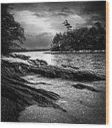 Winter Moonlight Wolfes Neck Woods Maine Wood Print