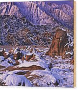 Winter Morning Alabama Hills And Eastern Sierras Wood Print