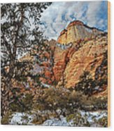 Winter Morning In Zion Wood Print