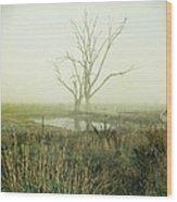 Winter Morning Londrigan 1 Wood Print