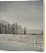 Winter Morning Wood Print