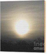 Winter Morning Sun Wood Print