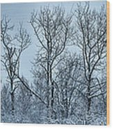 Winter Morning View Wood Print