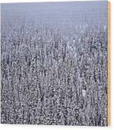 Winter Mystery Wood Print