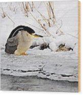 Winter Night Heron Wood Print
