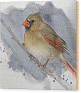 Winter Northern Cardinal Wood Print