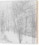 Winter Of '14 Wood Print
