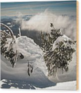 Winter On Mt. Bachelor Wood Print