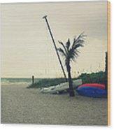 Winter On The Beach Wood Print