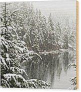 Winter On The Coast Wood Print