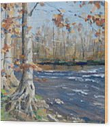 Winter On The Little Harpeth Wood Print by Sandra Harris