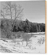 Winter On The Moose River Wood Print