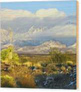 Winter In The Organ Mountains Wood Print