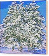 Winter Painting Wood Print