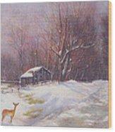 Winter Palette Wood Print by Howard Scherer