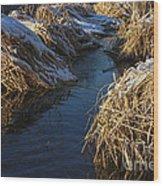 Winter Park 3 Wood Print