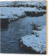 Winter Park 4 Wood Print