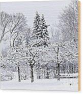 Winter Park Landscape Wood Print