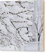 Winter Park Under Heavy Snow Wood Print by Elena Elisseeva