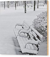 Winter Park With Benches Wood Print