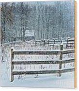Winter Pasture Wood Print