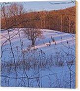 Winter Pasture Sunset Wood Print