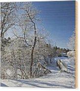 Winter Path Wood Print