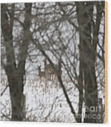 Winter Family Pause  Wood Print