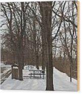 Winter Picnic Wood Print