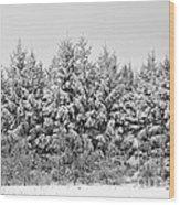 Winter Pine Wood Print