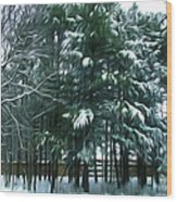 Winter Pine Tree  Wood Print