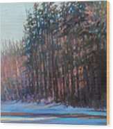 Winter Pines Wood Print by Ed Chesnovitch