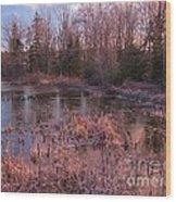 Winter Pond Landscape Wood Print