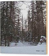 Winter Quiet Wood Print