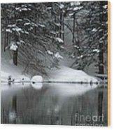 Winter Reflection 004 Wood Print