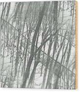 Winter Road Dream Wood Print