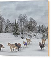 Winter Run Wood Print