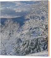 Winter Scene At Berry Summit Wood Print