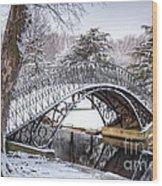 Winter Scenic Wood Print