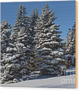 Winter Scenic Landscape Wood Print
