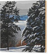 Winter Serenity Wood Print