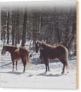 Winter Shadow Horses Wood Print