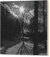 Winter Shadow Wood Print