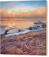 Winter Shore Wood Print