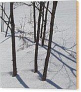 Winter Silence Wood Print