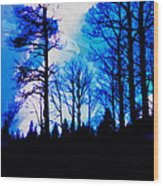 Winter Silhouettes - Ghost Eagle Wood Print